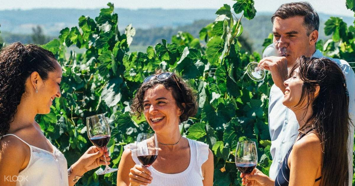 Barcelona Wine and Cava with City Highlights Day Tour