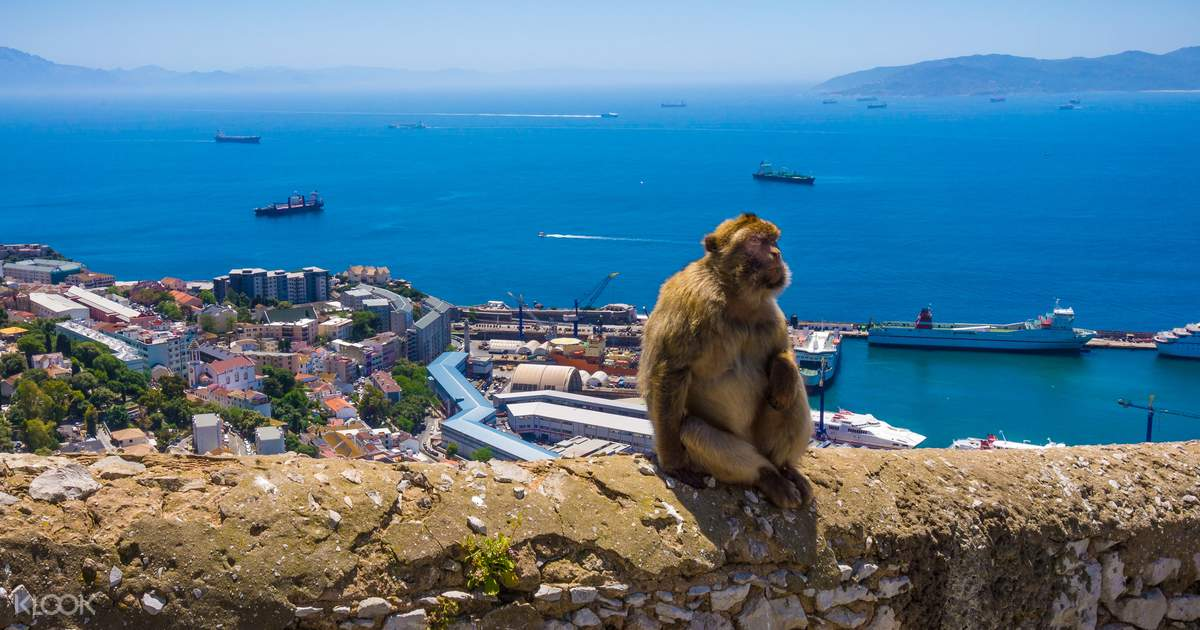 Gibraltar Sightseeing Full Day Tour