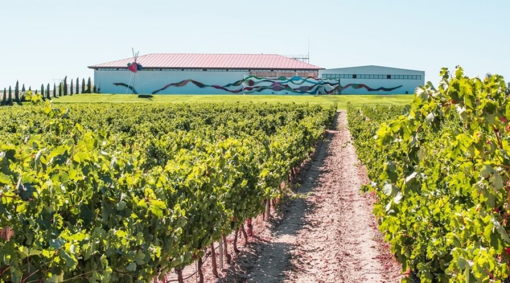 Spanish-vineyard-with-mural-on-back-wall-in-background