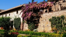 Seville to Granada Day Trip (Full-day Private & Group Tours) 2021